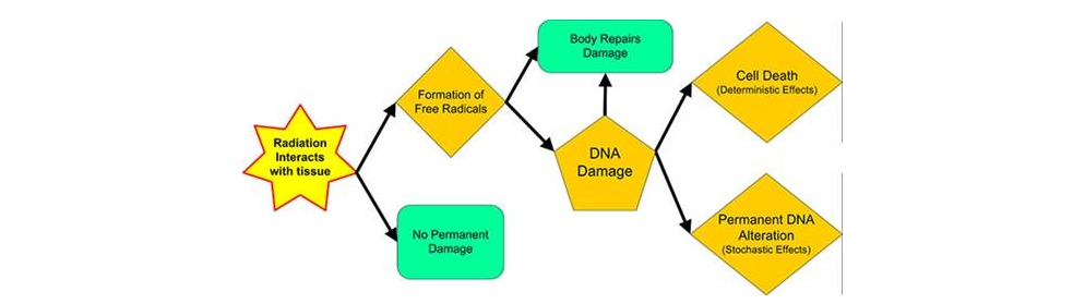 how to understand and communicate radiation risk diagram